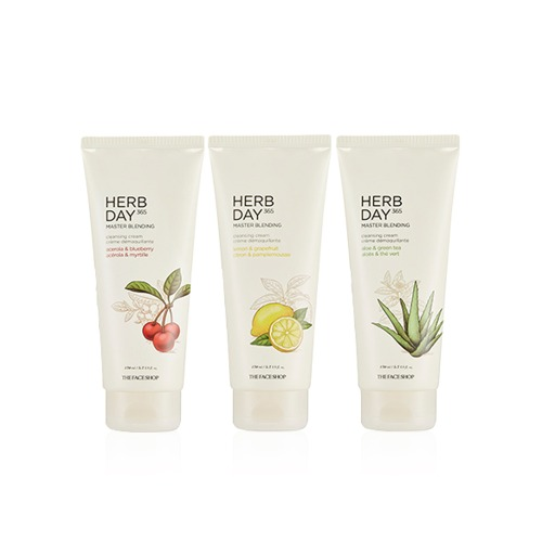 THE FACE SHOP Herb Day 365 Master Blending Cleansing Cream 170ml Renewal